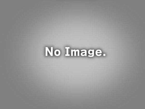 画像1: 【開発中】【新規制車検対応】TEZZOスポーツマフラー for シトロエンDS3(15.04.06 更新) (1)